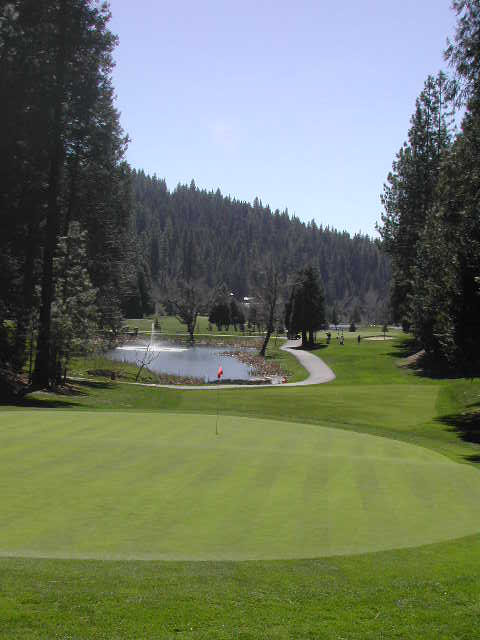Sequoia Woods Country Club And Golf Course Arnold Ca